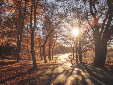 Sonbaharda en güzel Trakya rotaları